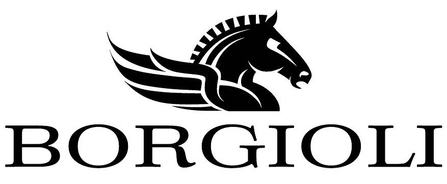 Borgioli Logo